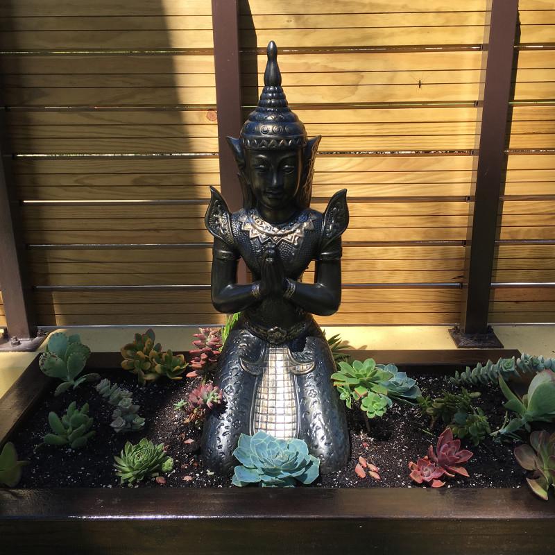 Feel the Zen Garden
